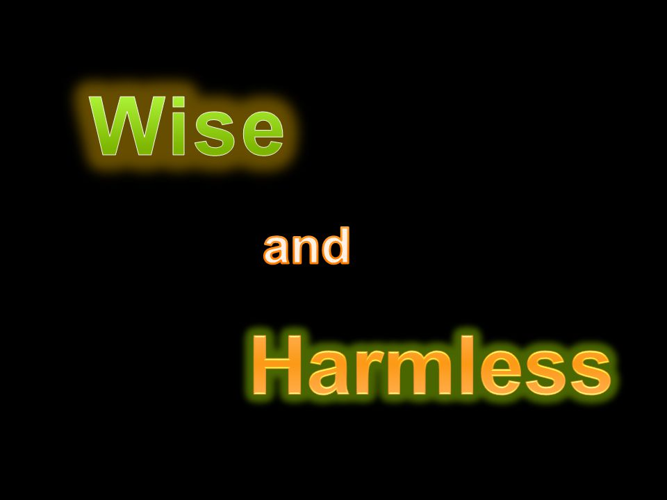 Wise and Harmless