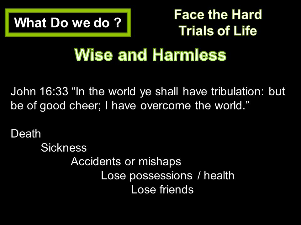 Wise and Harmless Face the Hard What Do we do Trials of Life