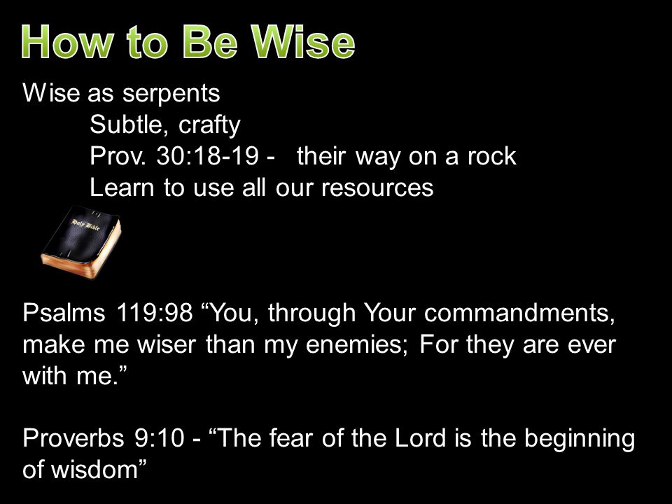 How to Be Wise Wise as serpents Subtle, crafty