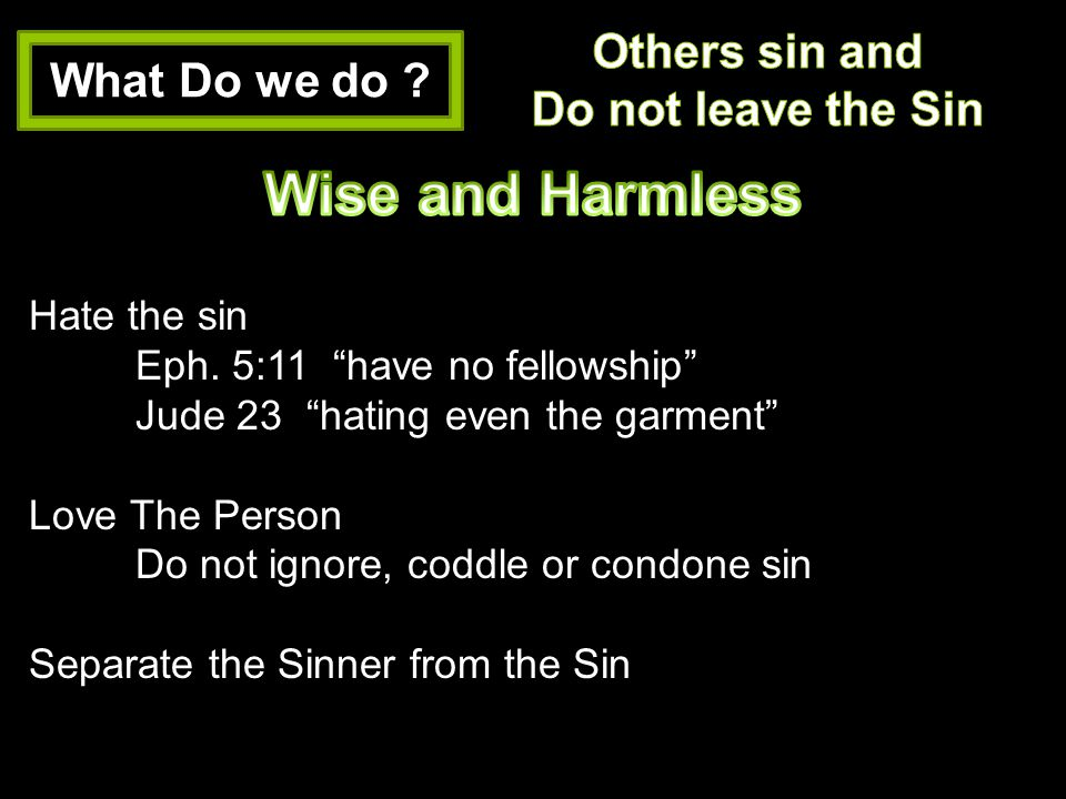 Wise and Harmless Others sin and What Do we do Do not leave the Sin