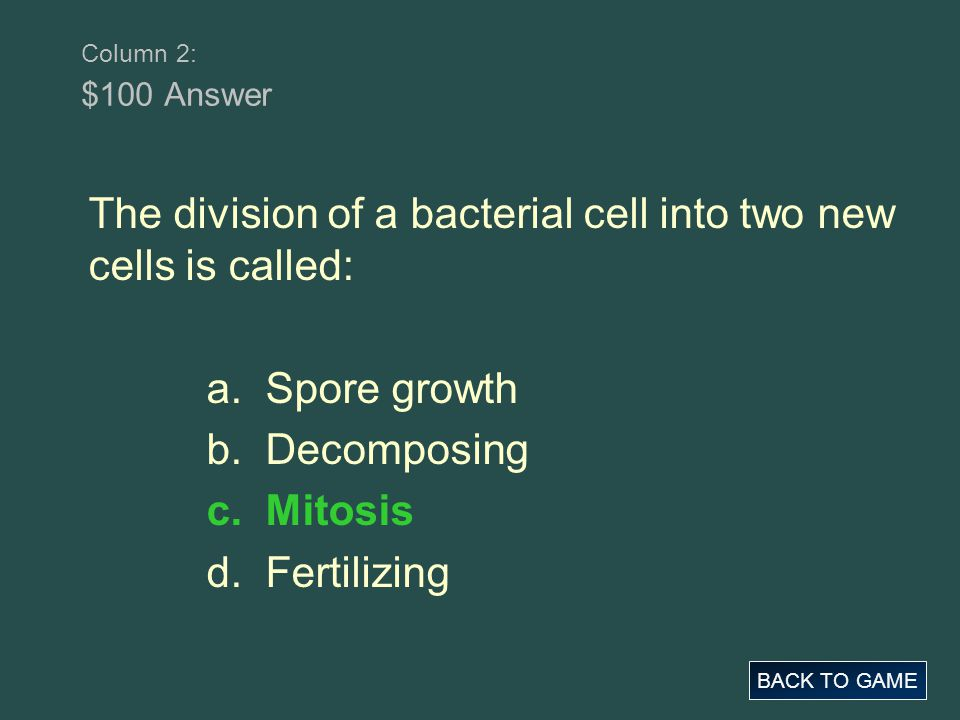 The division of a bacterial cell into two new cells is called: