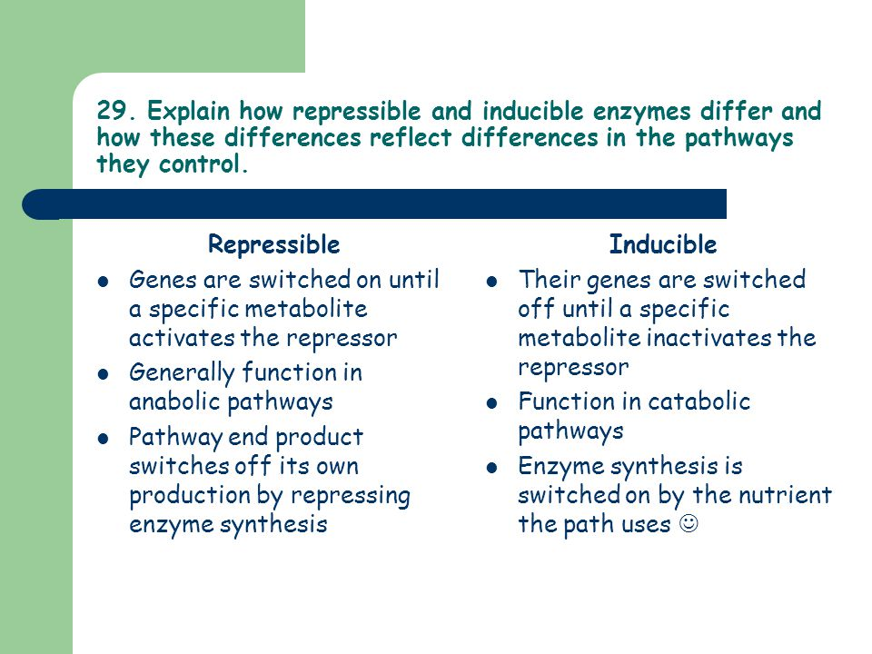 29. Explain how repressible and inducible enzymes differ and how these differences reflect differences in the pathways they control.