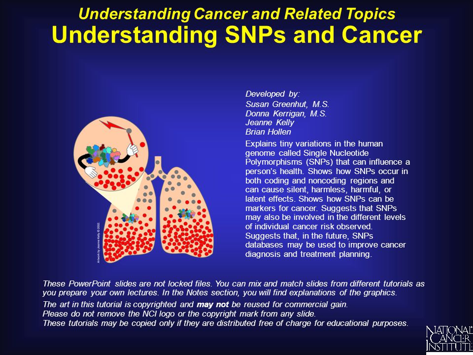 Understanding SNPs and Cancer