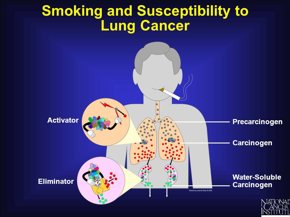 Smoking and Susceptibility to Lung Cancer