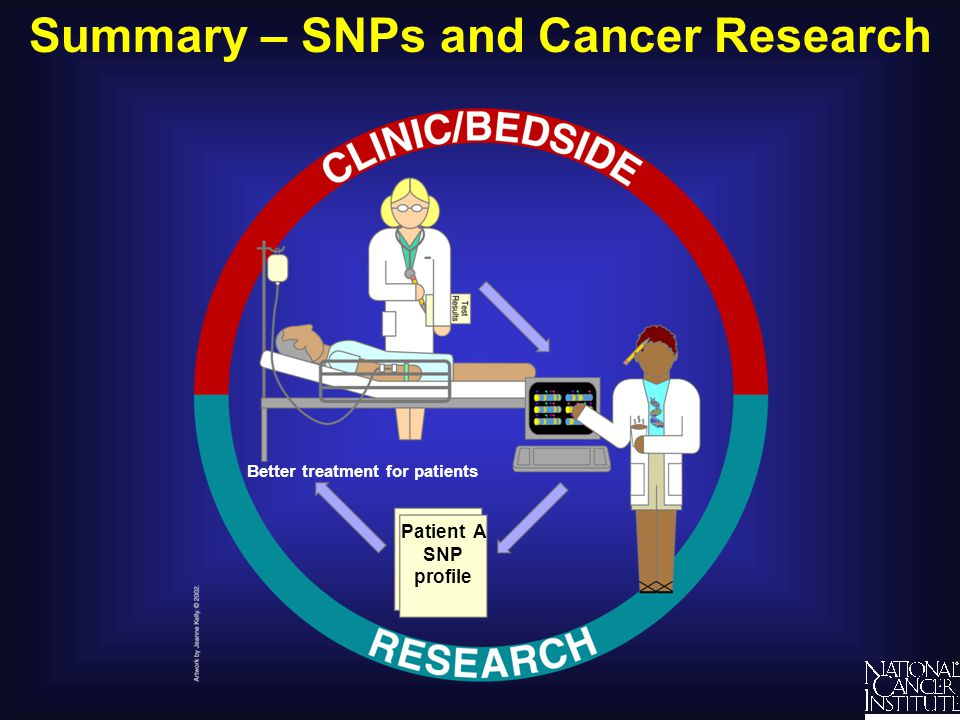 Summary – SNPs and Cancer Research