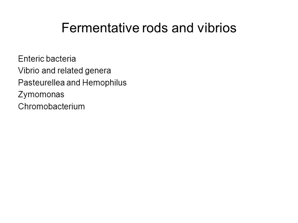 Fermentative rods and vibrios