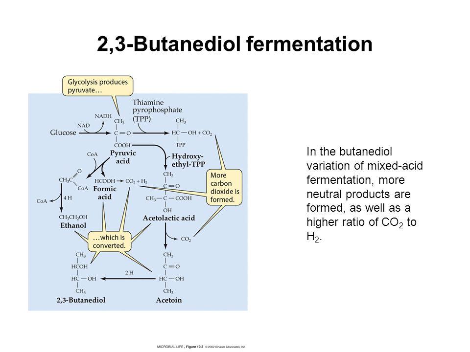 2,3-Butanediol fermentation
