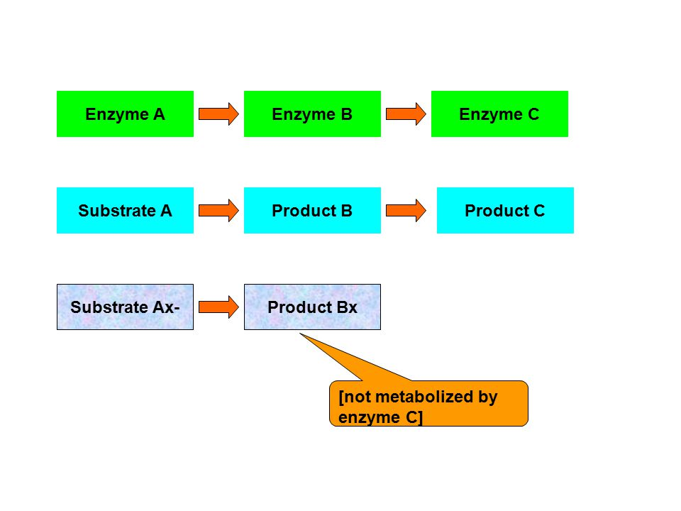 Enzyme A Enzyme B. Enzyme C. Substrate A. Product B.