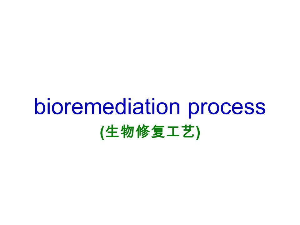 bioremediation process (生物修复工艺)