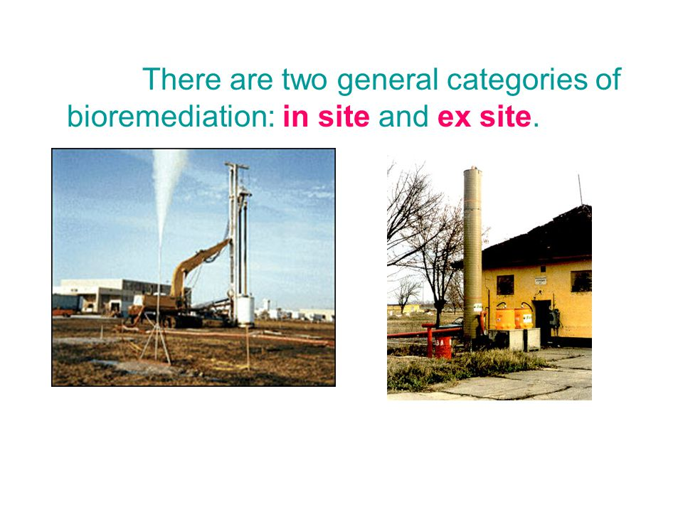 There are two general categories of bioremediation: in site and ex site.