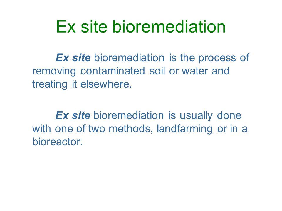 Ex site bioremediation