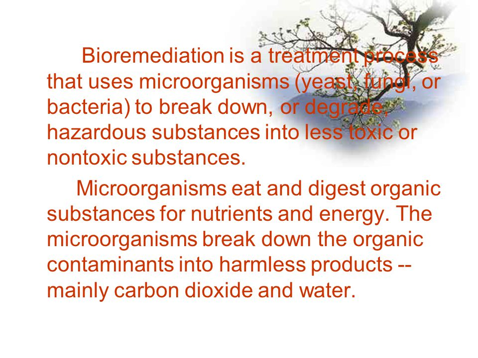 Bioremediation is a treatment process that uses microorganisms (yeast, fungi, or bacteria) to break down, or degrade, hazardous substances into less toxic or nontoxic substances.