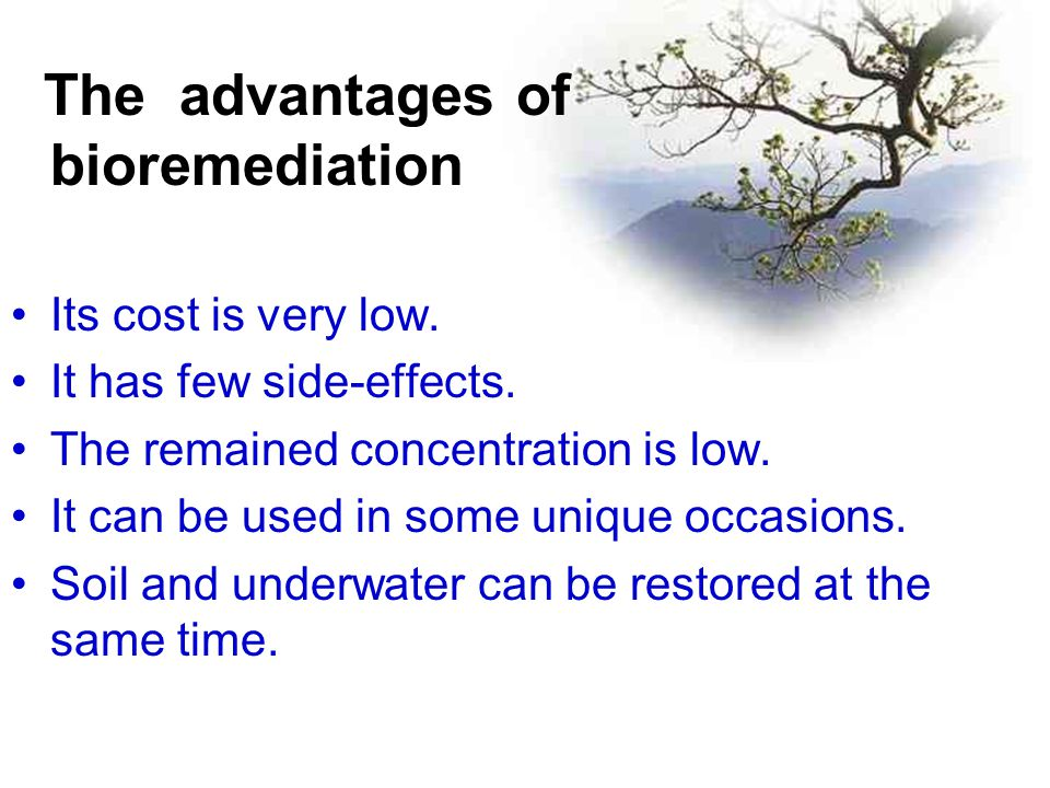 The advantages of bioremediation