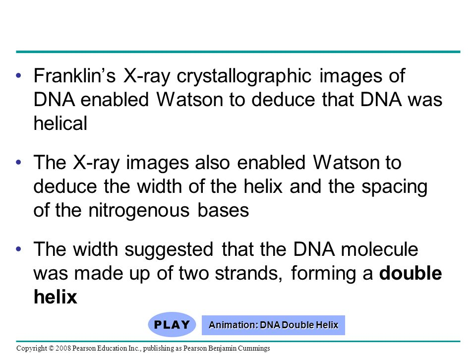 Animation: DNA Double Helix