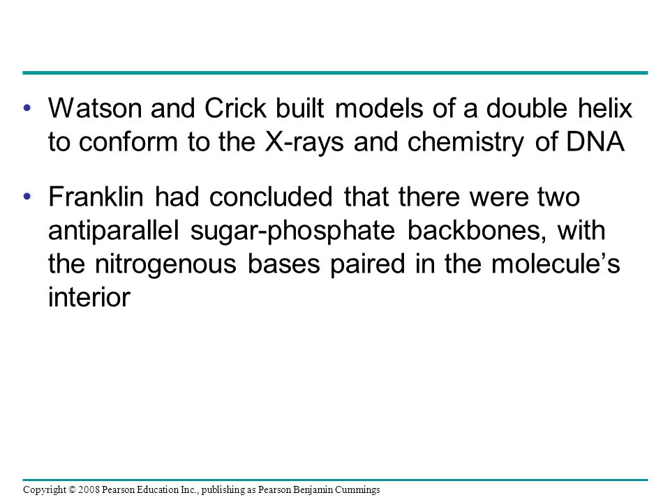 Watson and Crick built models of a double helix to conform to the X-rays and chemistry of DNA