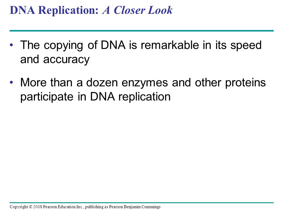 DNA Replication: A Closer Look