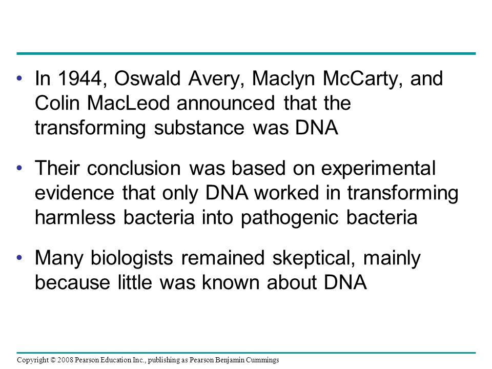 In 1944, Oswald Avery, Maclyn McCarty, and Colin MacLeod announced that the transforming substance was DNA