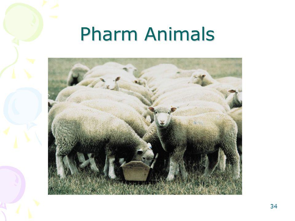 Pharm Animals