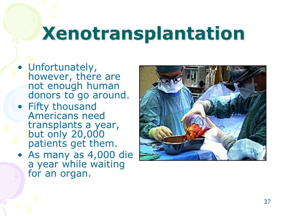 Xenotransplantation Unfortunately, however, there are not enough human donors to go around.
