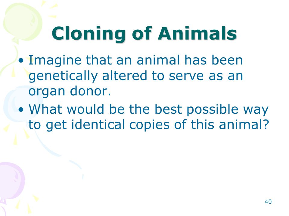 Cloning of Animals Imagine that an animal has been genetically altered to serve as an organ donor.