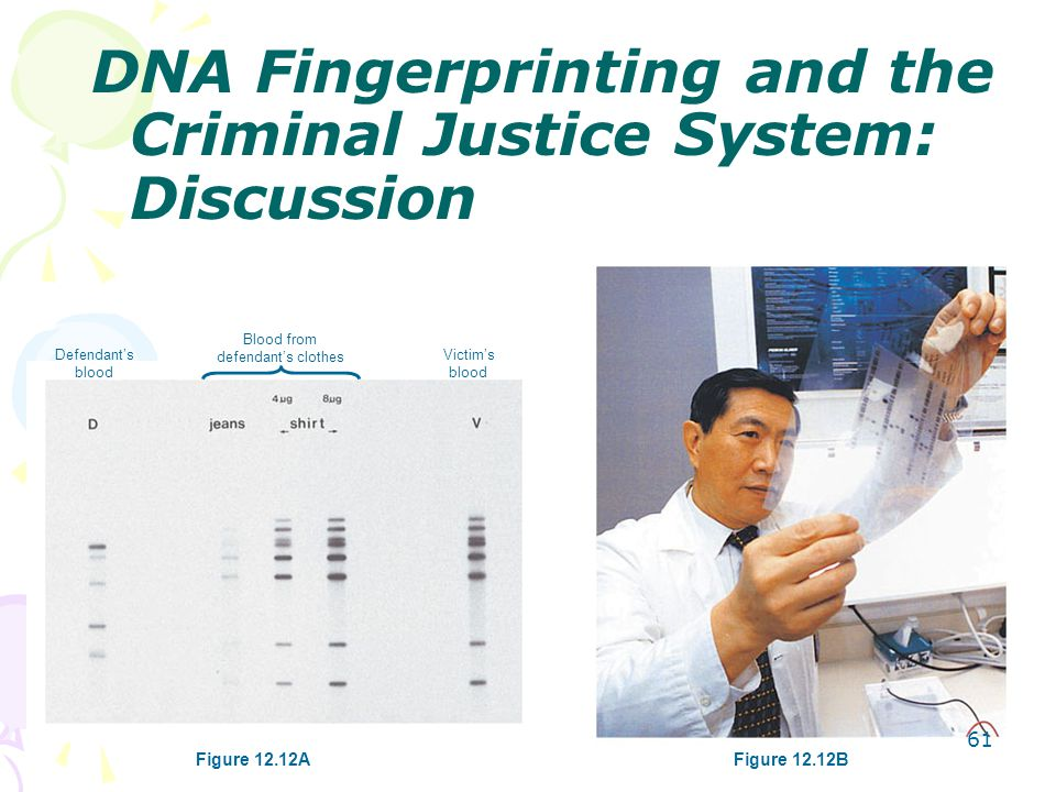 DNA Fingerprinting and the Criminal Justice System: Discussion