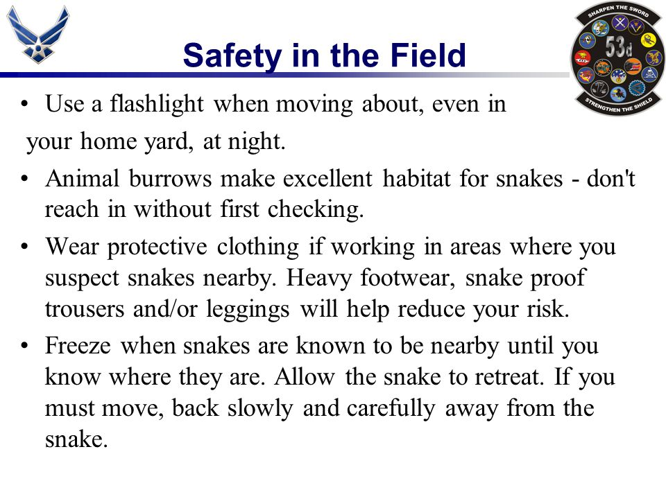 Safety in the Field Use a flashlight when moving about, even in