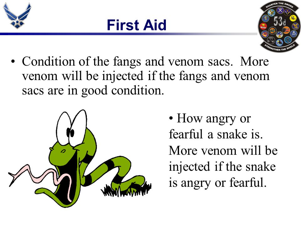 First Aid Condition of the fangs and venom sacs. More venom will be injected if the fangs and venom sacs are in good condition.