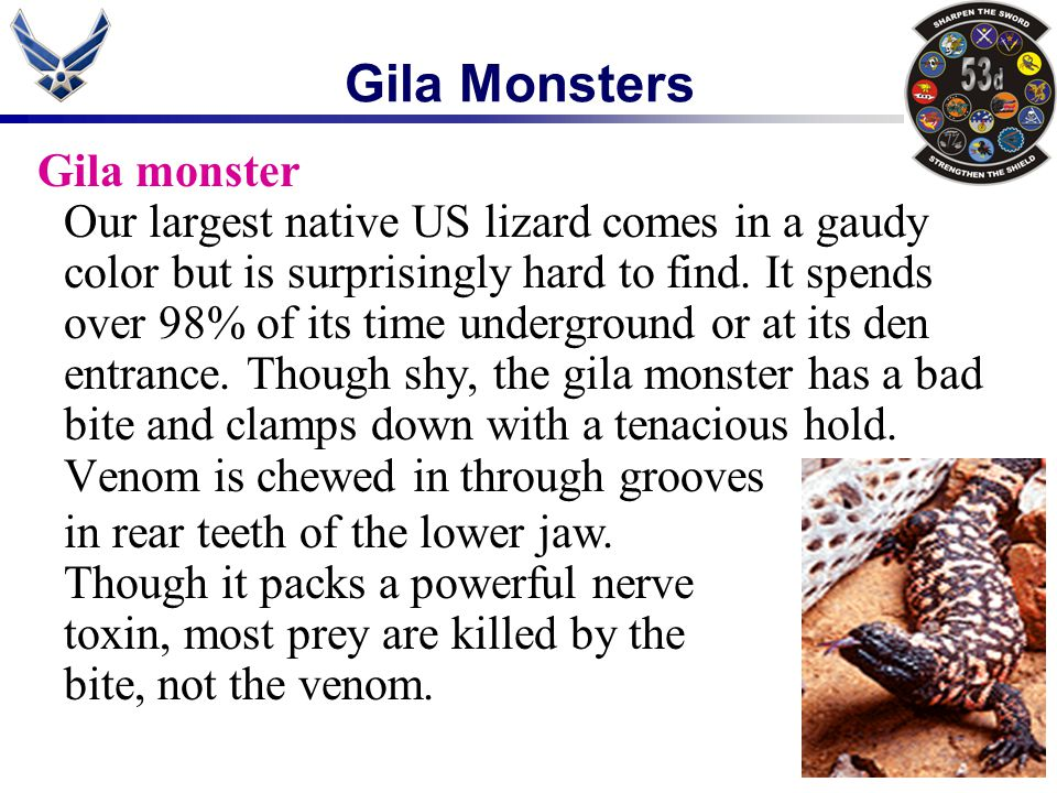 Gila Monsters