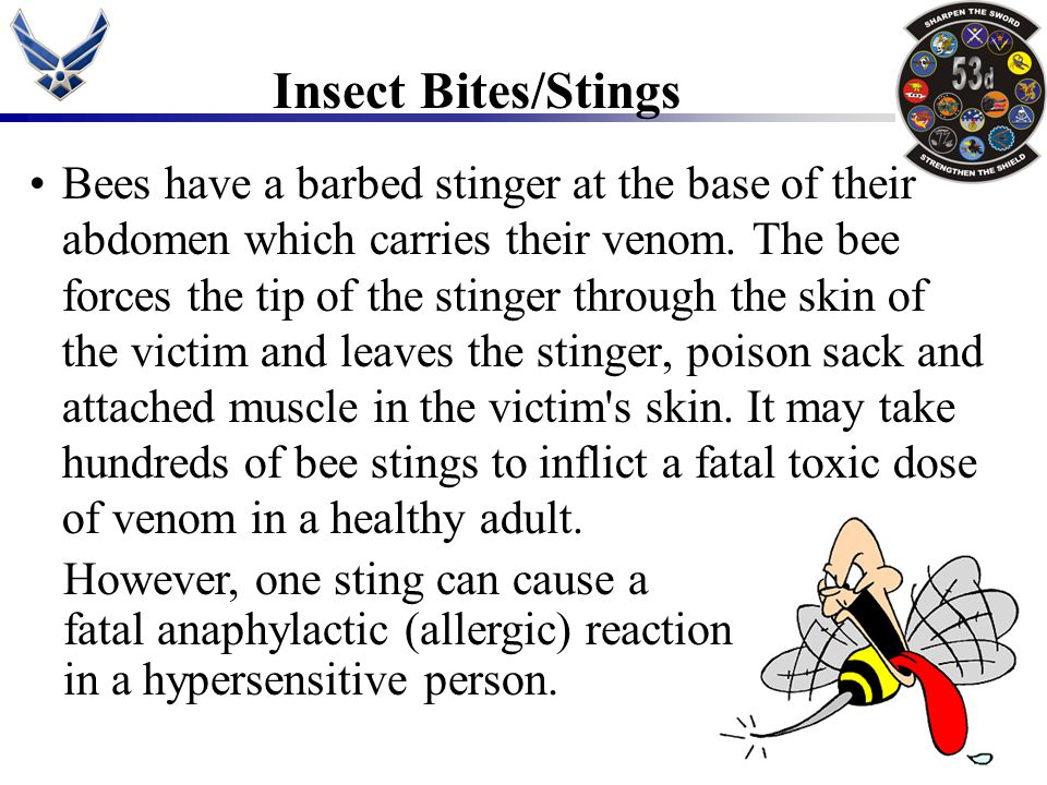 Insect Bites/Stings