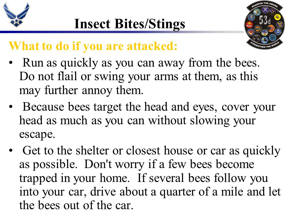 Insect Bites/Stings What to do if you are attacked: