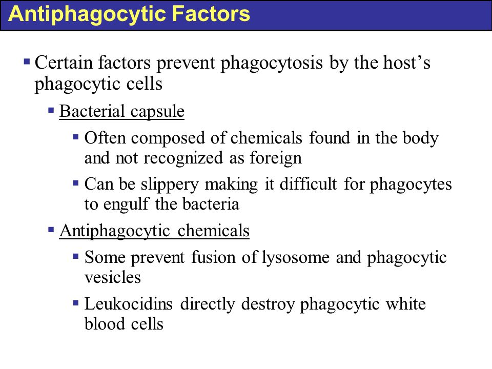 Antiphagocytic Factors