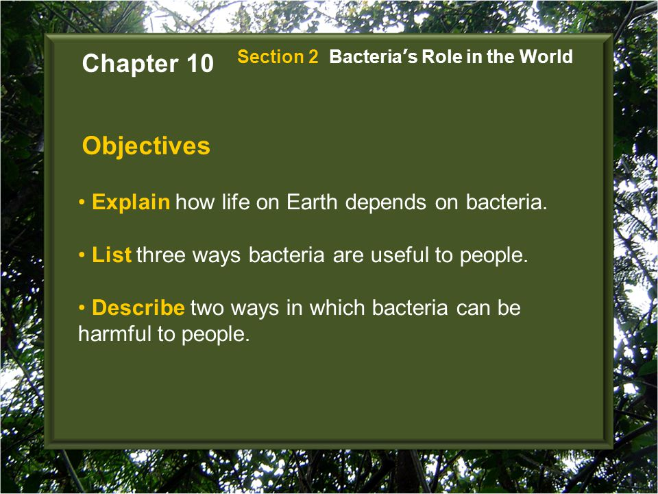 Chapter 10 Objectives Explain how life on Earth depends on bacteria.