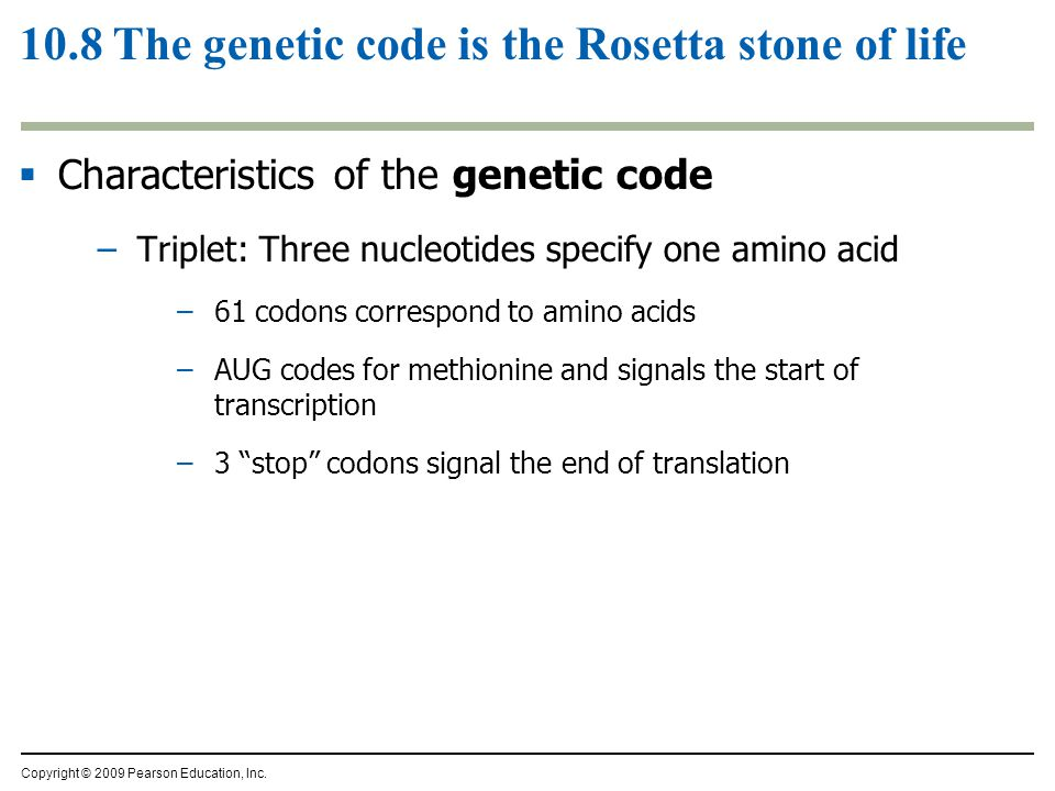 10.8 The genetic code is the Rosetta stone of life