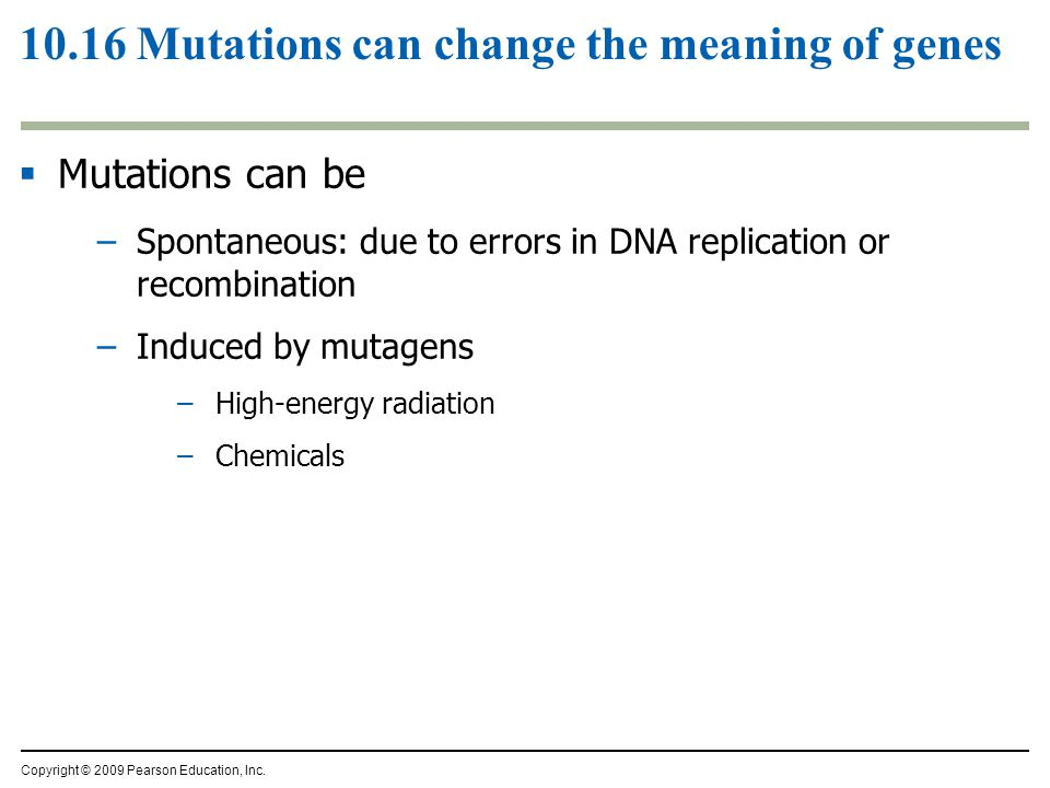 10.16 Mutations can change the meaning of genes