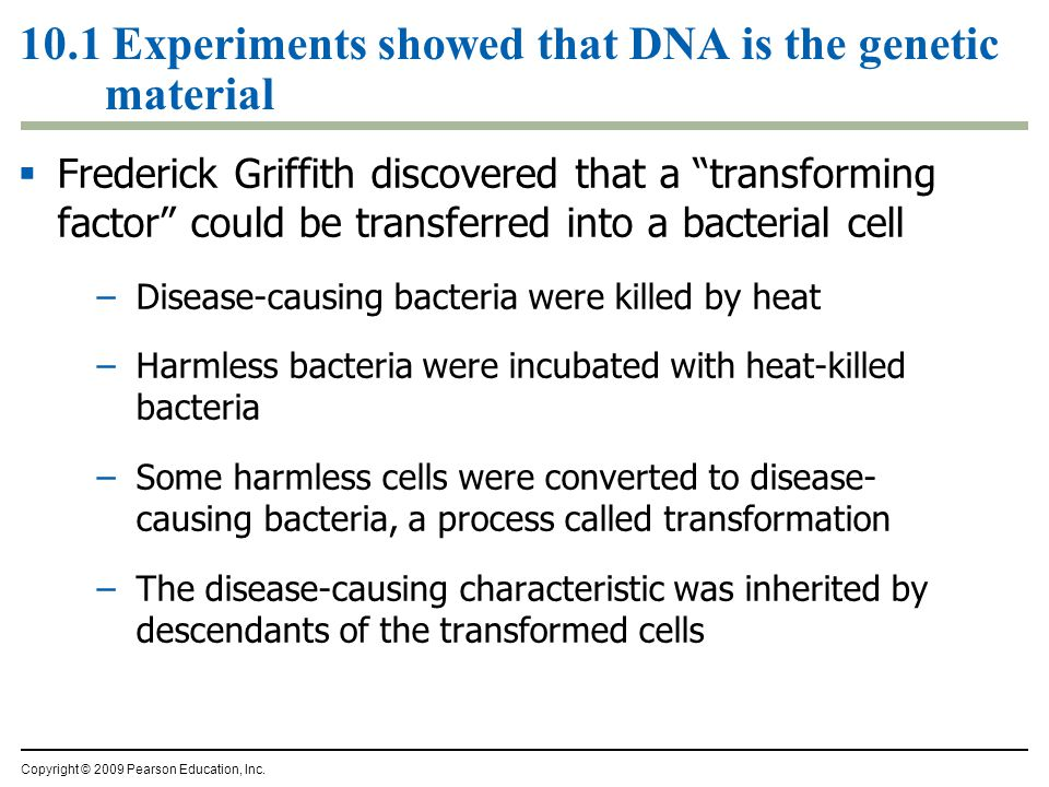 10.1 Experiments showed that DNA is the genetic material