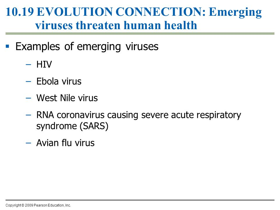 10.19 EVOLUTION CONNECTION: Emerging viruses threaten human health