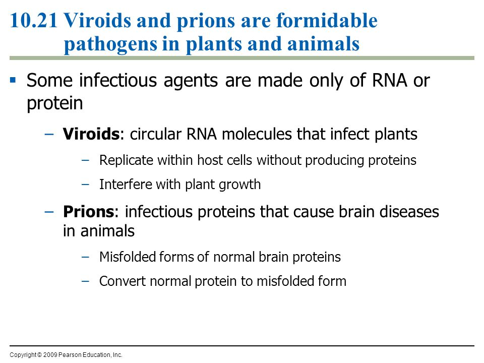 10.21 Viroids and prions are formidable pathogens in plants and animals