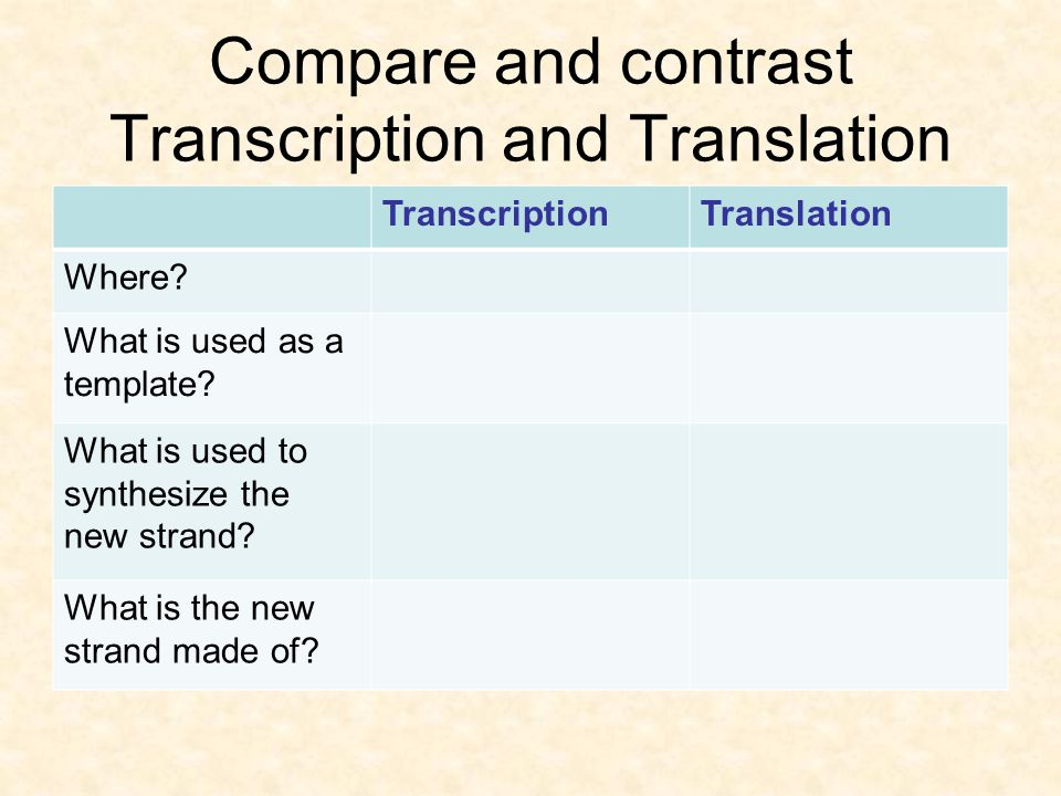 Compare and contrast Transcription and Translation