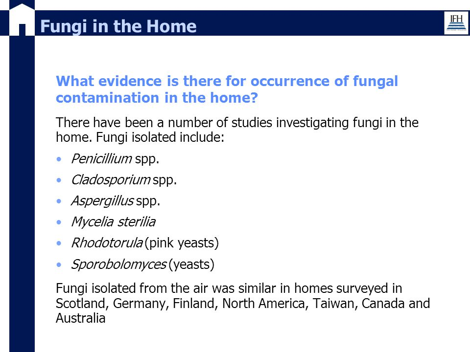 Fungi in the Home What evidence is there for occurrence of fungal contamination in the home