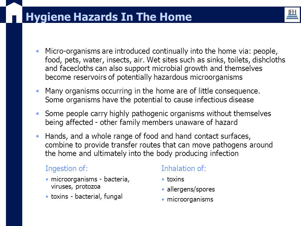 Hygiene Hazards In The Home