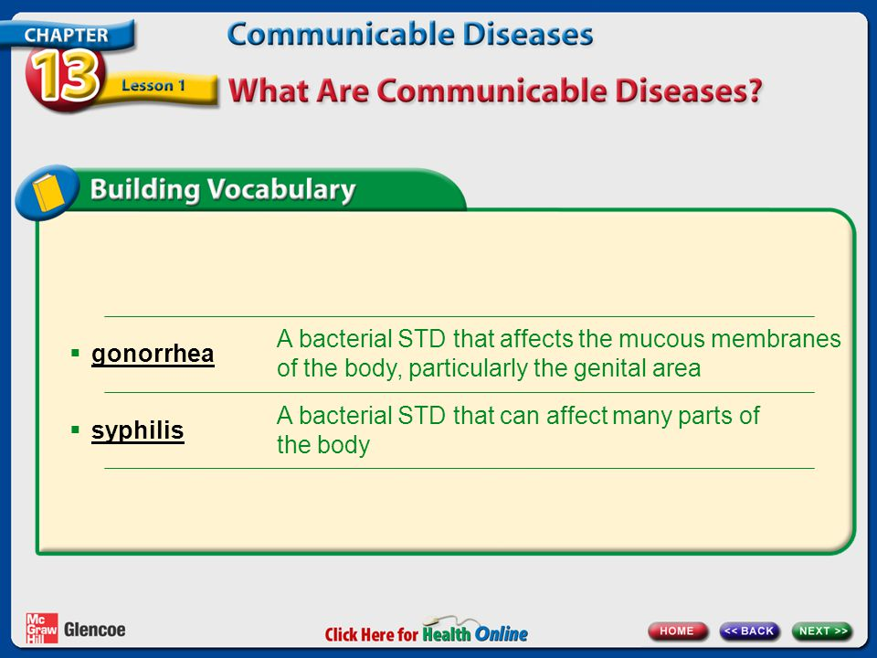 A bacterial STD that can affect many parts of the body syphilis