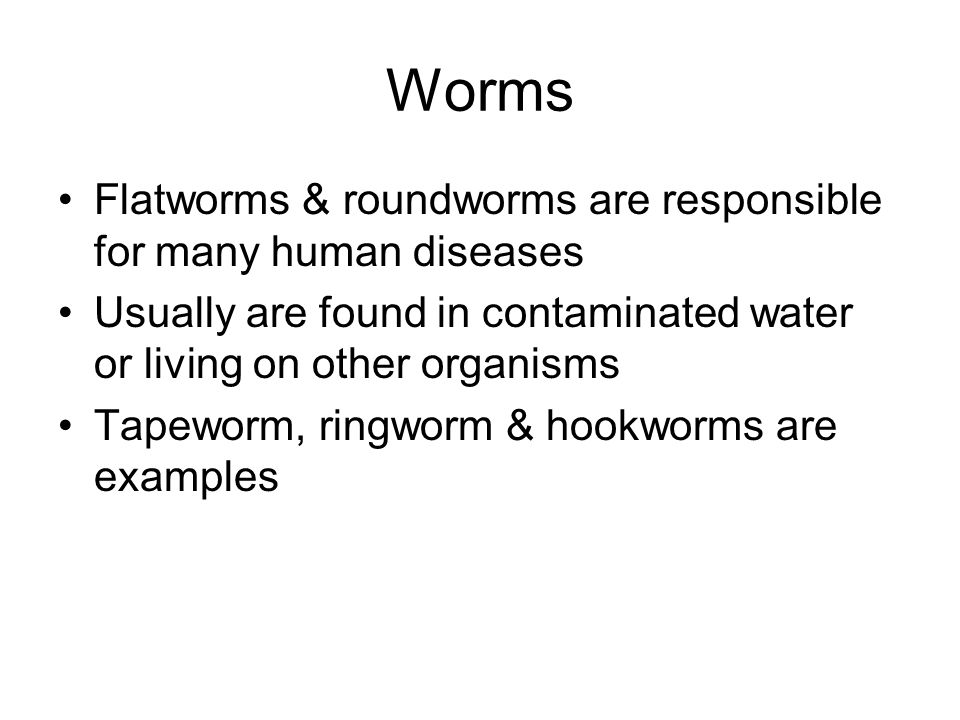 Worms Flatworms & roundworms are responsible for many human diseases