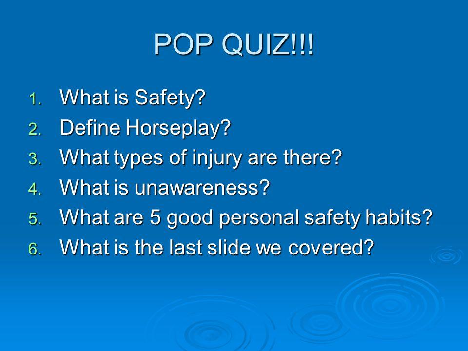 POP QUIZ!!! What is Safety Define Horseplay