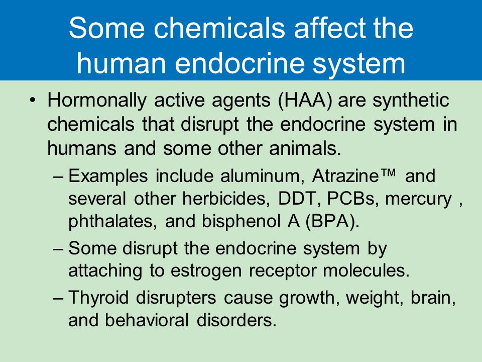 Some chemicals affect the human endocrine system