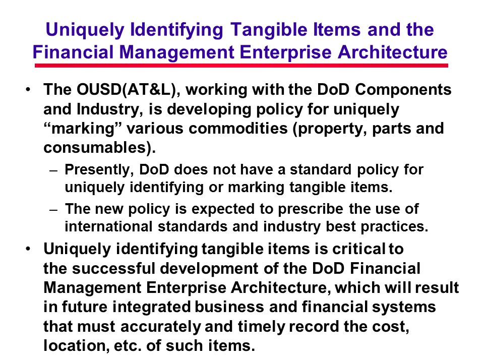 Uniquely Identifying Tangible Items and the Financial Management Enterprise Architecture