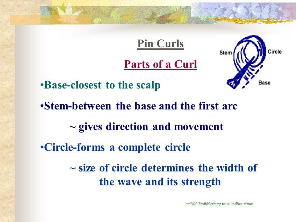 Pin Curls Parts of a Curl