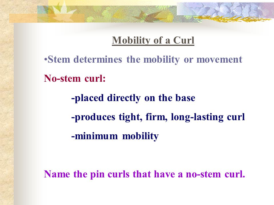 Mobility of a Curl Stem determines the mobility or movement. No-stem curl: -placed directly on the base.