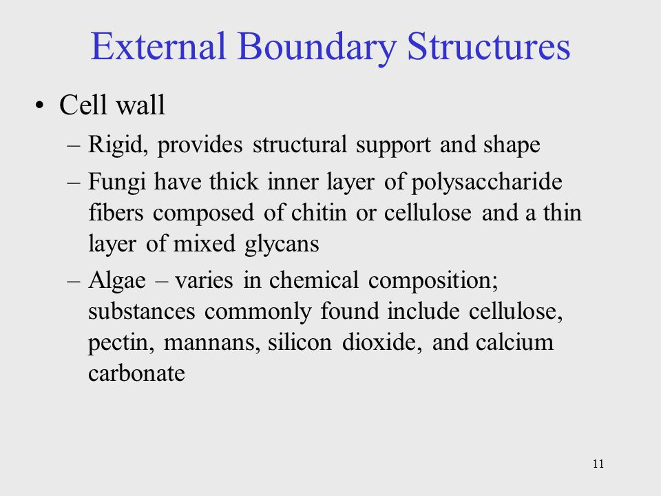 External Boundary Structures