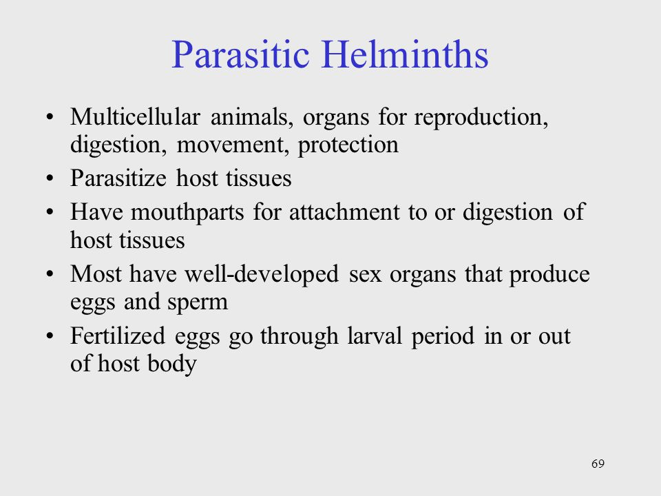 Parasitic Helminths Multicellular animals, organs for reproduction, digestion, movement, protection.