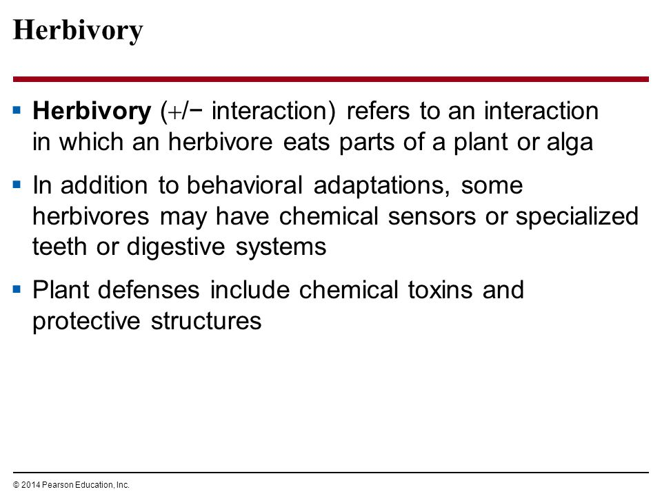 Herbivory Herbivory (/− interaction) refers to an interaction in which an herbivore eats parts of a plant or alga.